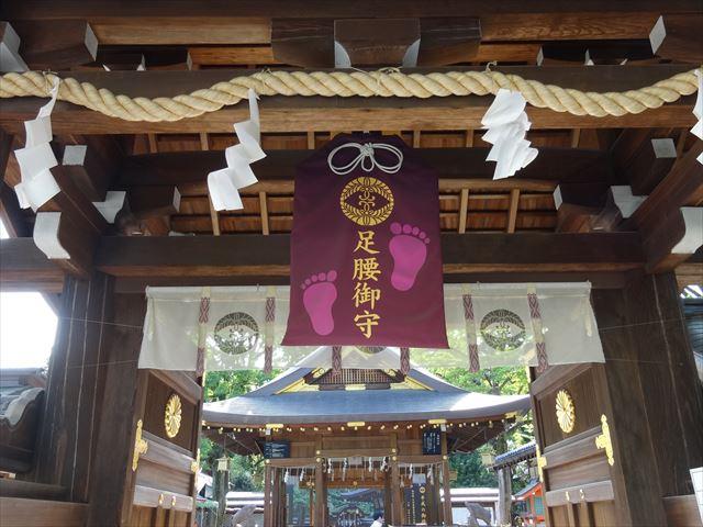 至る所にイノシシだらけ!の護王神社に行ってきました!