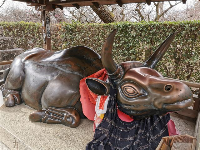 北野天満宮の牛