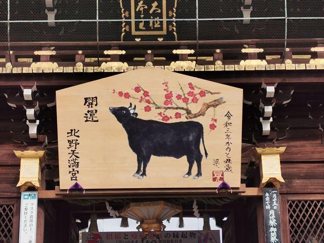 【2021年 丑年】牛だらけの北野天満宮に初詣。おみくじの結果は…