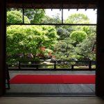 春の庭園特別公開中の「正伝永源院」に行ってきました!