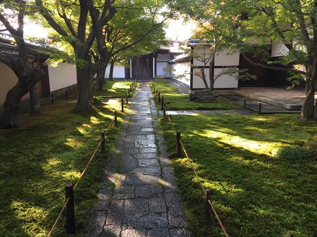 枯山水庭園が素晴らしい!「大徳寺 黄梅院」秋の特別公開