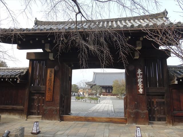 織田信長の京都の定宿だった「妙覚寺」 ~第52回京の冬の旅~
